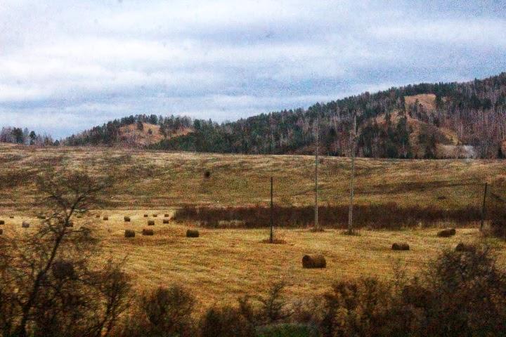 Trans Siberian haystacks fields