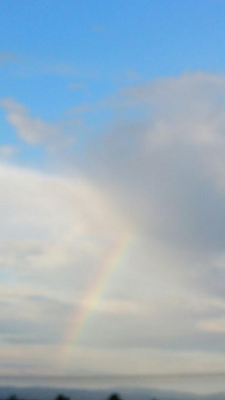 だぁい好きな、虹の写真…虹を見ると撮りたくなります(笑)