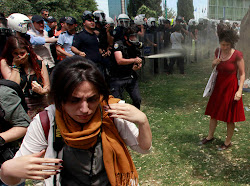 Protesters and police in Istanbul's Taksim Gezi Park on 28 May