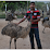 Aditya Emu Farm's profile photo