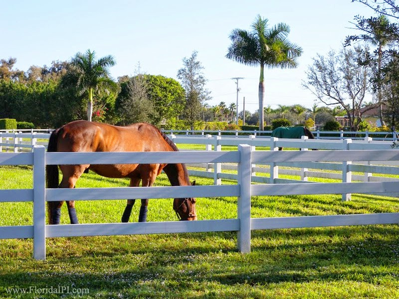Equestrian Club of Wellington in Wellington FL | Homes for Sale | Market  Report June 2016