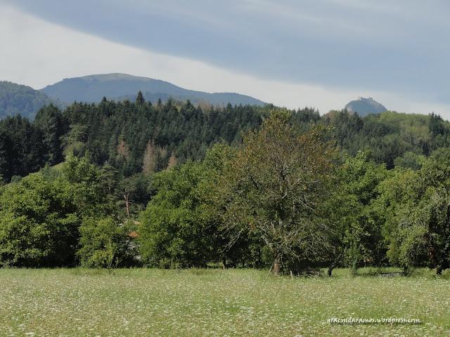 passeando - Passeando até à Escócia! - Página 17 DSC05740