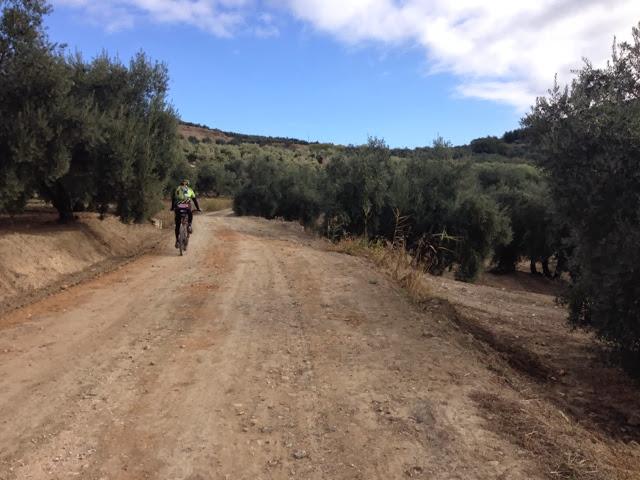 Rutas noviembre  Peña BTT La Loma Úbeda