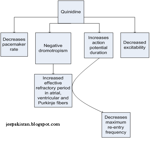 Your Source of Information: Quinidine