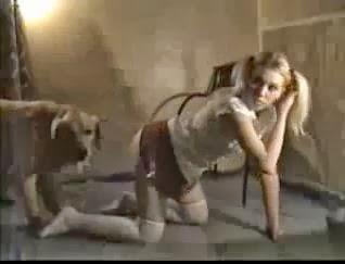 Phim sex gái tây dẫn chó và nhà nghỉ địt nhau