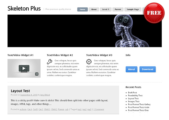 Skeleton Plus Flexible WordPress Theme
