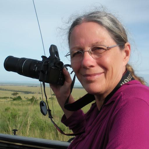 Cynthia Myers Cynthia myers s profile photoCynthia Myers Schlitz