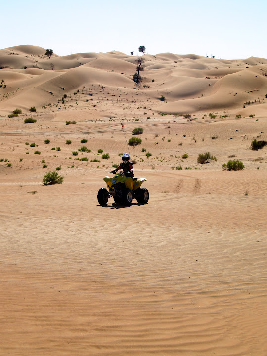 The Suzuki Quadrunner 250 comfortably negotiates sand dunes.