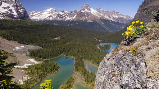 Mary Lake, Yoho National Park, British Columbia, Canada.jpg