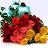 Sindhu Ja avatar image