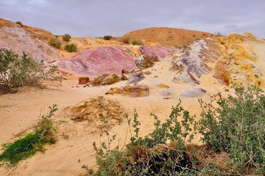 Красота пустыни Негев - Цветные Пески. Экскурсия гида Светланы Фиалковой.