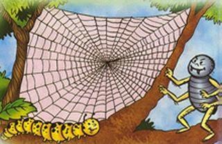 La araña y el gusano de seda fabula con moraleja