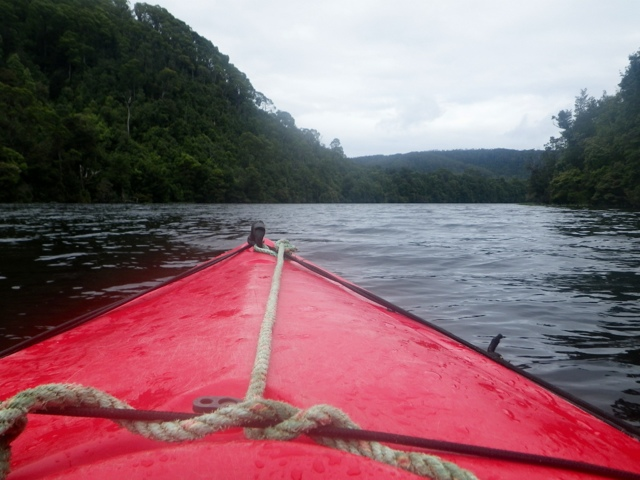 The Tarkine River