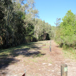 Numbered campsites with fire pits