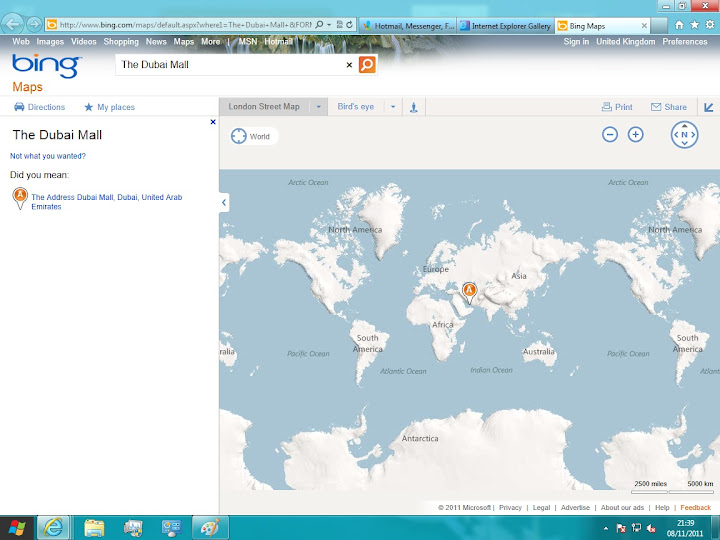 IE Accelerator into Bing Maps