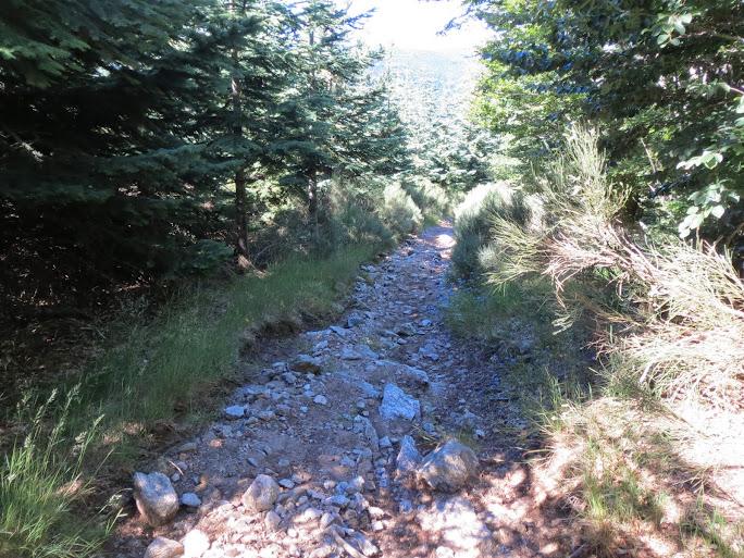 [CR] Dinotrip en mode DUL, grande traversée des Monts d'Ardèche IMG_0421