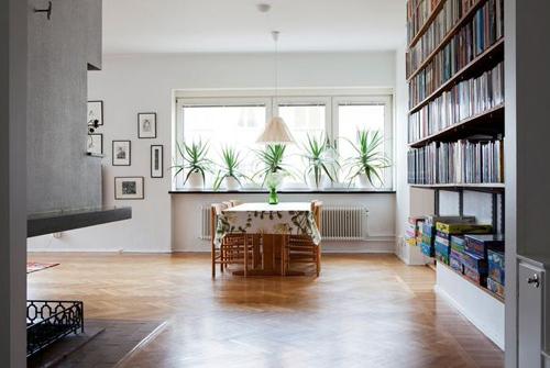 las plantas y la decoracion