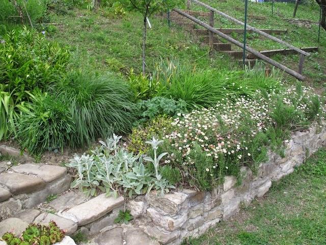Balzo giardino in cerca di privacy pagina 3 - Giardini terrazzati immagini ...