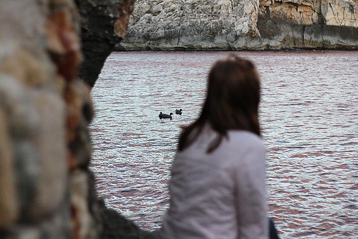 après-midi de Janvier, paysage Malte, Sannat île de Gozo, paysages méditerranéens, photos nature