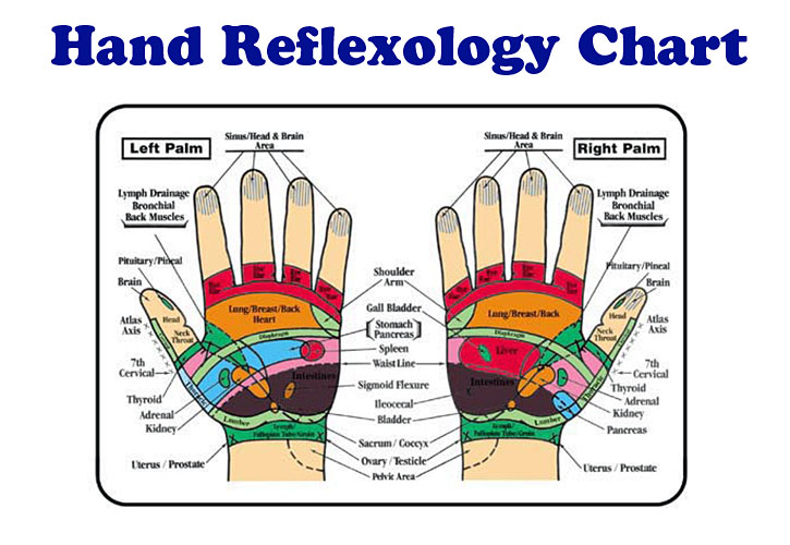 hand and foot reflexology pdf