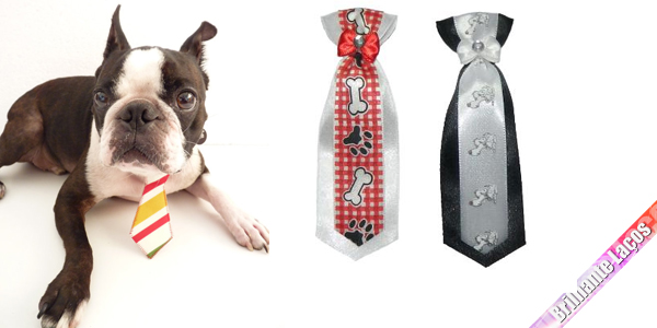 Venda de gravatas para Petshop, Banho e Tosa