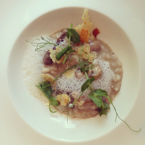 mushroom risotto with foam and a parmesan crisp