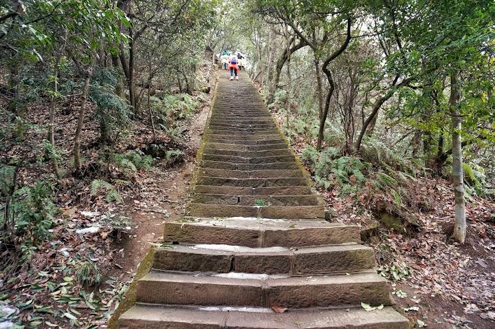 Subida 3000 step
