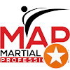 Martial Arts Avatar