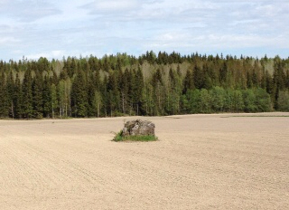 Stone in Finnish field