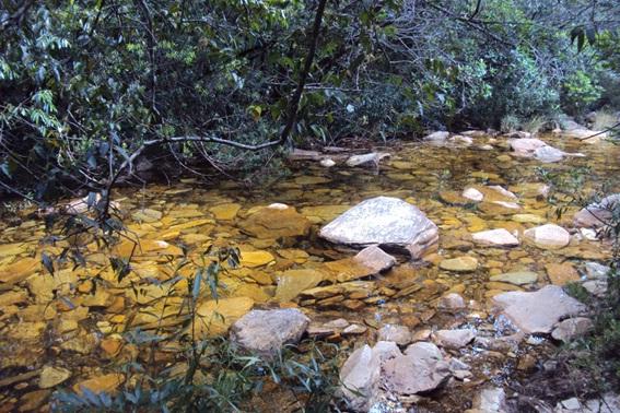 Riacho na trilha para a Cachoeira da Farofa