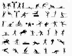 Guia completo de exercícios para emagrecer