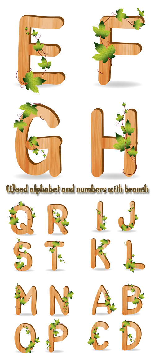 Stock: Wood alphabet and numbers with branch green leaves