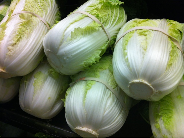 public domain picture of cabbages