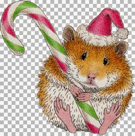 HM~ChristmasHamster~LM.jpg