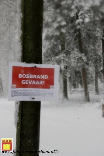 eerste sneeuwval in overloon 07-12-2012  (11).JPG