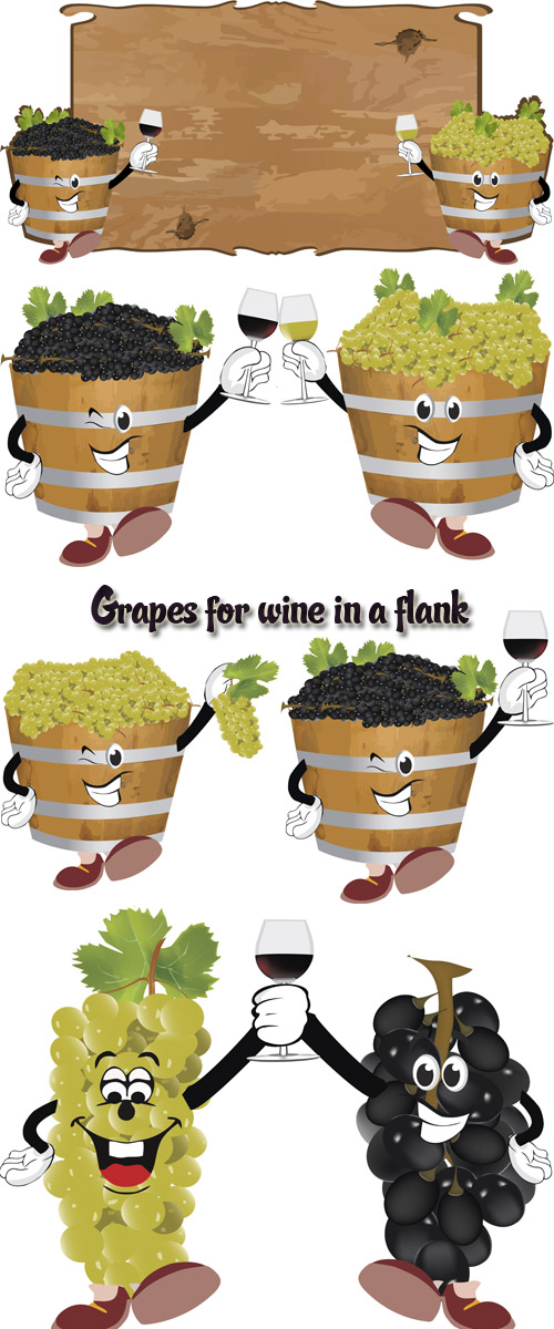 Stock: Grapes for wine in a flank