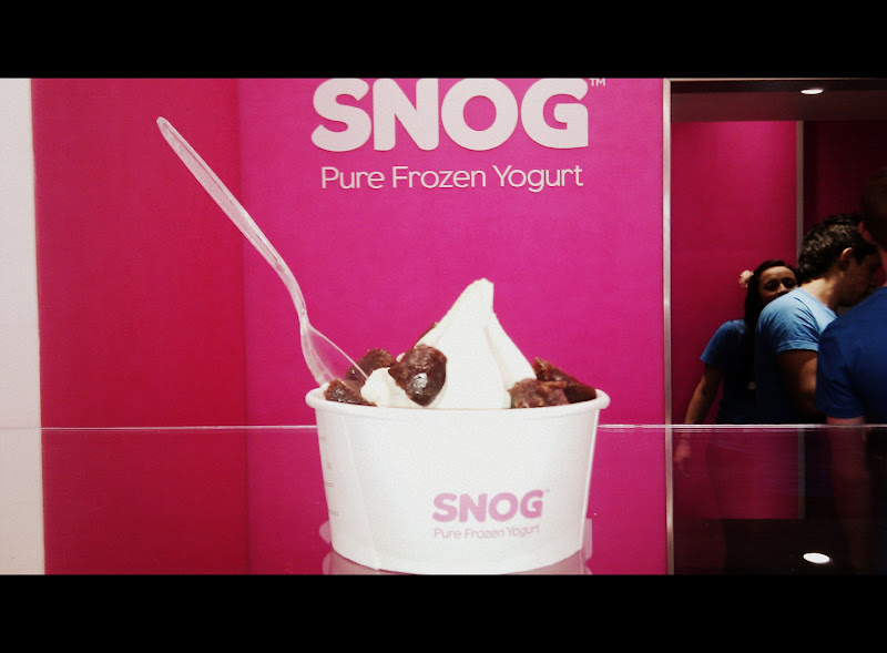 IMAG0028 GELUPO & SNOG   Gelato vs. Frozen Yogurt