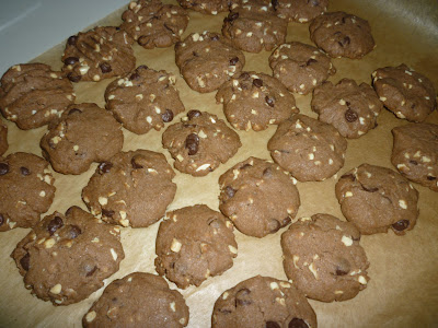 {focus_keyword} Biskut Wajib Raya = Coffee Chocolate Chip Cookies P1050597