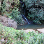 Waterfall next to Lyrebird Dell (186849)