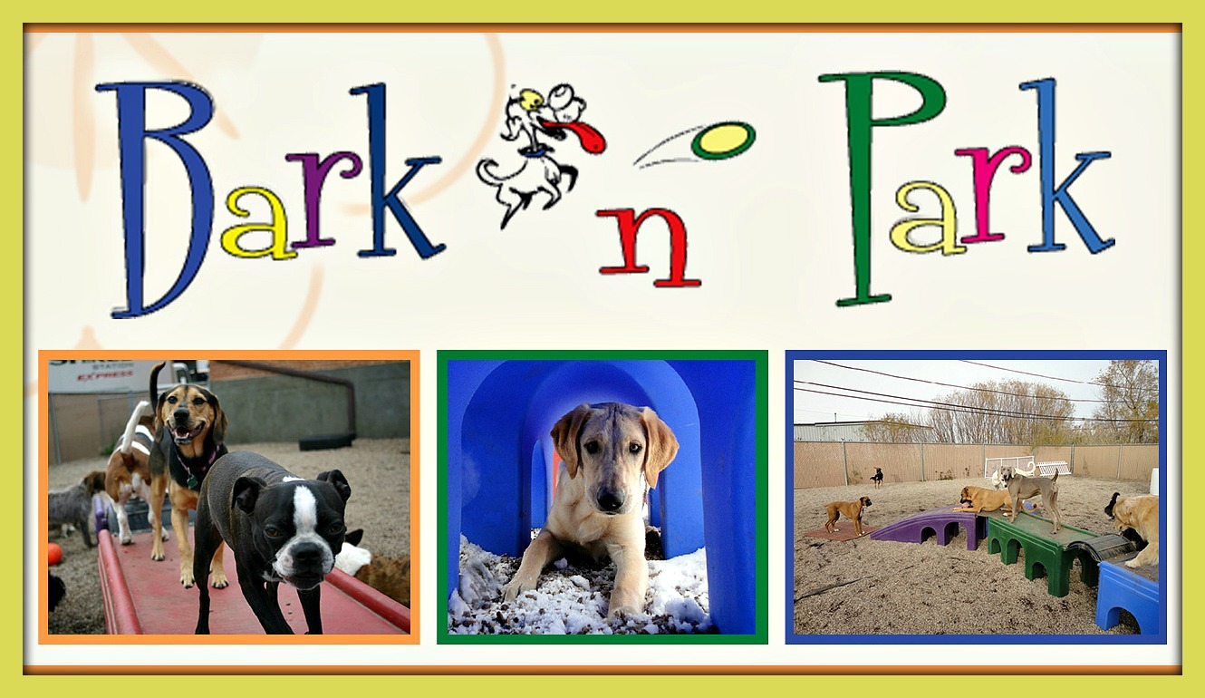 Dog Daycare IL | Bark N Park at 14100 W Lambs Ln, 3, Libertyville, IL