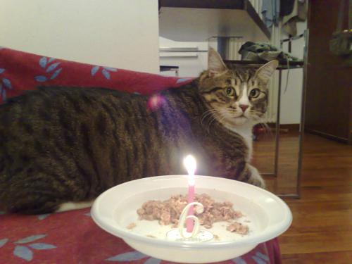 Sissi compleanno