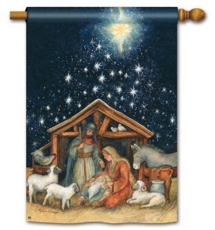 Holy Night Christmas Standard House Flag