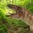 The Gaming Dinosaur avatar image