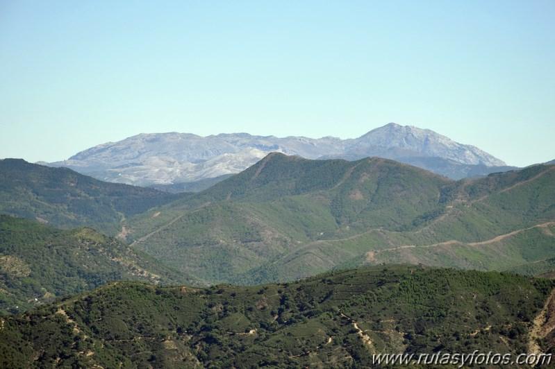 Sierra Crestelina