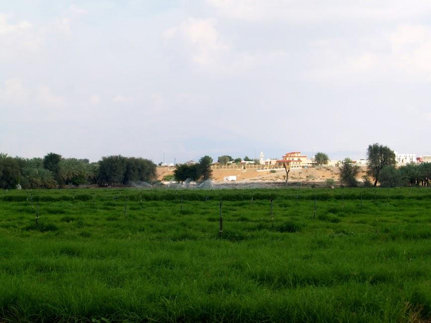 Awafi Ras Al Khaima