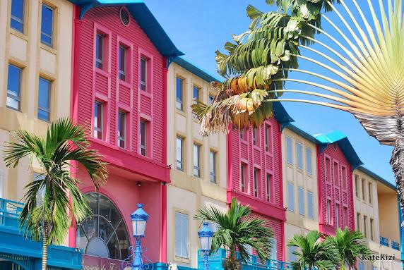 Торговый центр и символ Мартиники - пальма