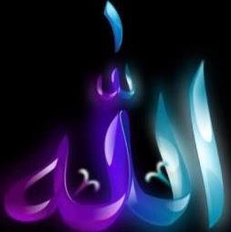 Syeda Tanveer Photo 8