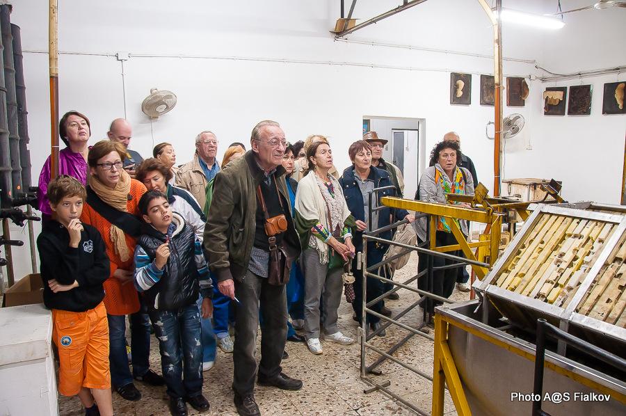 Мед в Израиле. У пчеловодов. Экскурсия в Израиле, гид Светлана Фиалкова.