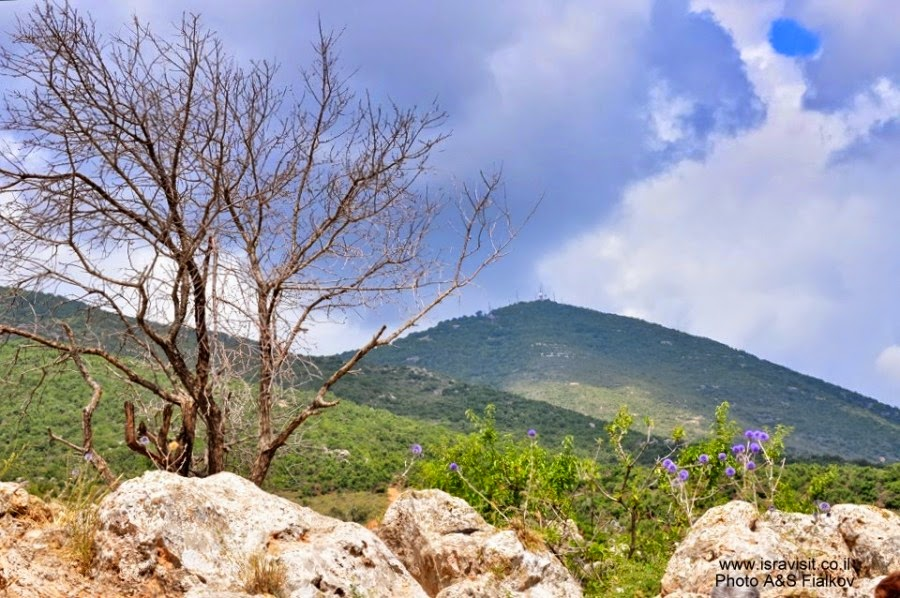 Гора Мирон. Экскурсия по Верхней Галилее. Гид в Галилее Светлана Фиалкова.
