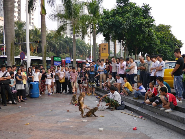 monkeys performing in Gongbei, Zhuhai